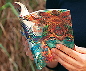 Paperblanks Flexi Softcover Diaries
