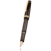 Pilot Justus 95 Fountain Pen - 1