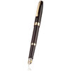 Sheaffer Sagaris fountain pen - black/gold - 2