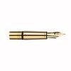 Gold Caran d'Ache Ecridor medium nib unit - 1