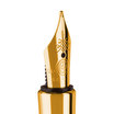 Caran d'ache Varius Fountain Pen Gold - 4