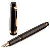 Pilot Justus 95 Fountain Pen - 2