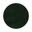 Diamine Green-Black Ink Swatch - 4