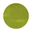 Diamine Spring Green Ink Swatch - 4